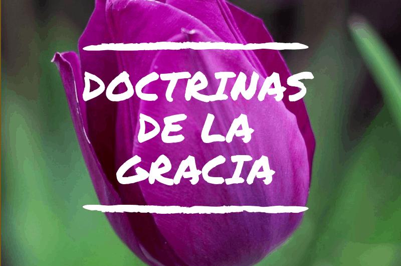 LAS DOCTRINAS DE LA GRACIA